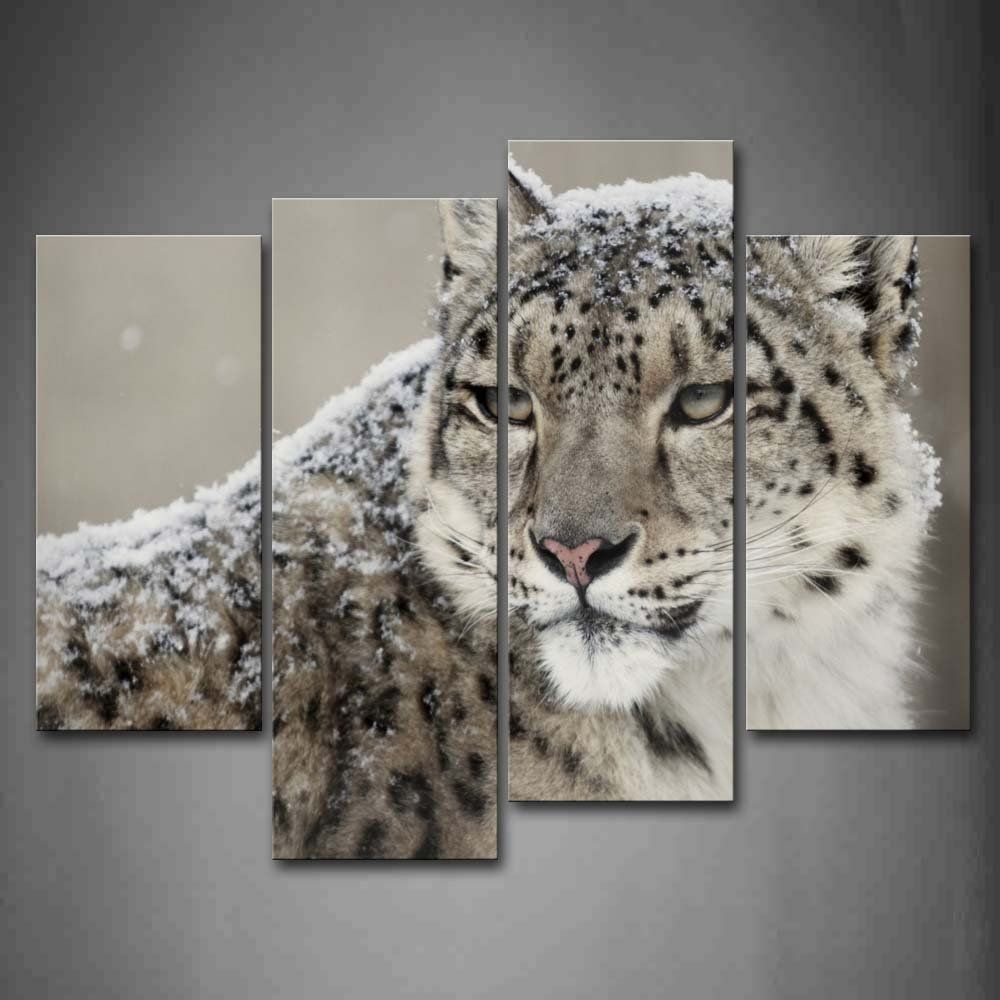 First Wall Art Snow Leopard Look Back Snow Wall Art Painting The Picture Print On Canvas Animal Pictures Fo Wall Art Pictures Modern Poster Wall Art Painting