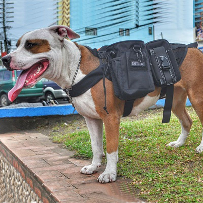 OneTigris Army Military Service Dog Vest Harness Molle