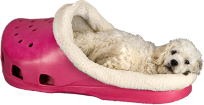 Haha Http Www Sasquatchpetbeds Com Index Php Route Product Product Product Id 90 Stylish Dog Beds Designer Dog Beds Pet Beds