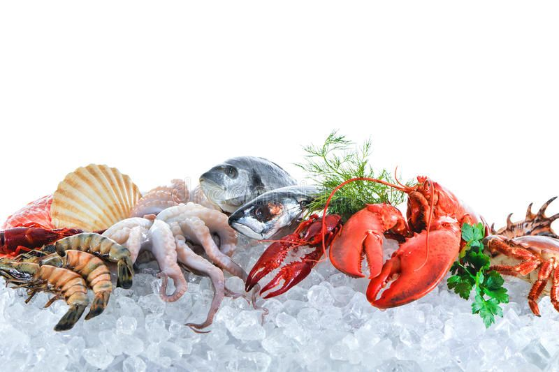 Fresh Seafood On Crushed Ice Fresh Fish And Seafood Arrangement On Crushed Ice Sponsored Crushed Seafood Fresh Ar Fresh Seafood Crushed Ice Seafood