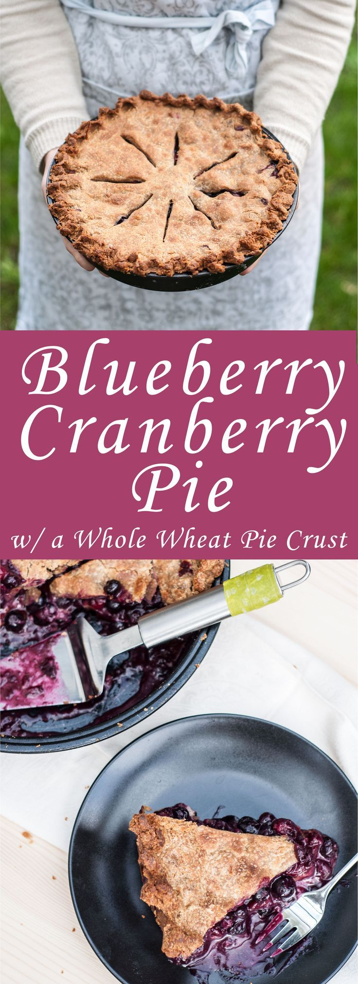 Blueberry Cranberry Pie - Vegan Family Recipes Juicy Blueberry Cranberry Pie Recipe with a healthie