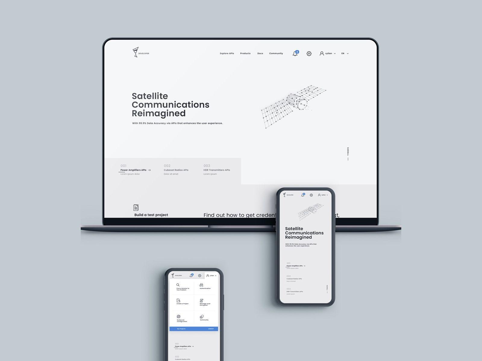 Api management web design brand guidelines management