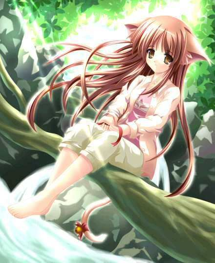 Google Image Result for http://images4.fanpop.com/image/photos/17700000/magical-girls-cute-anime-girls-17769009-440-539.jpg