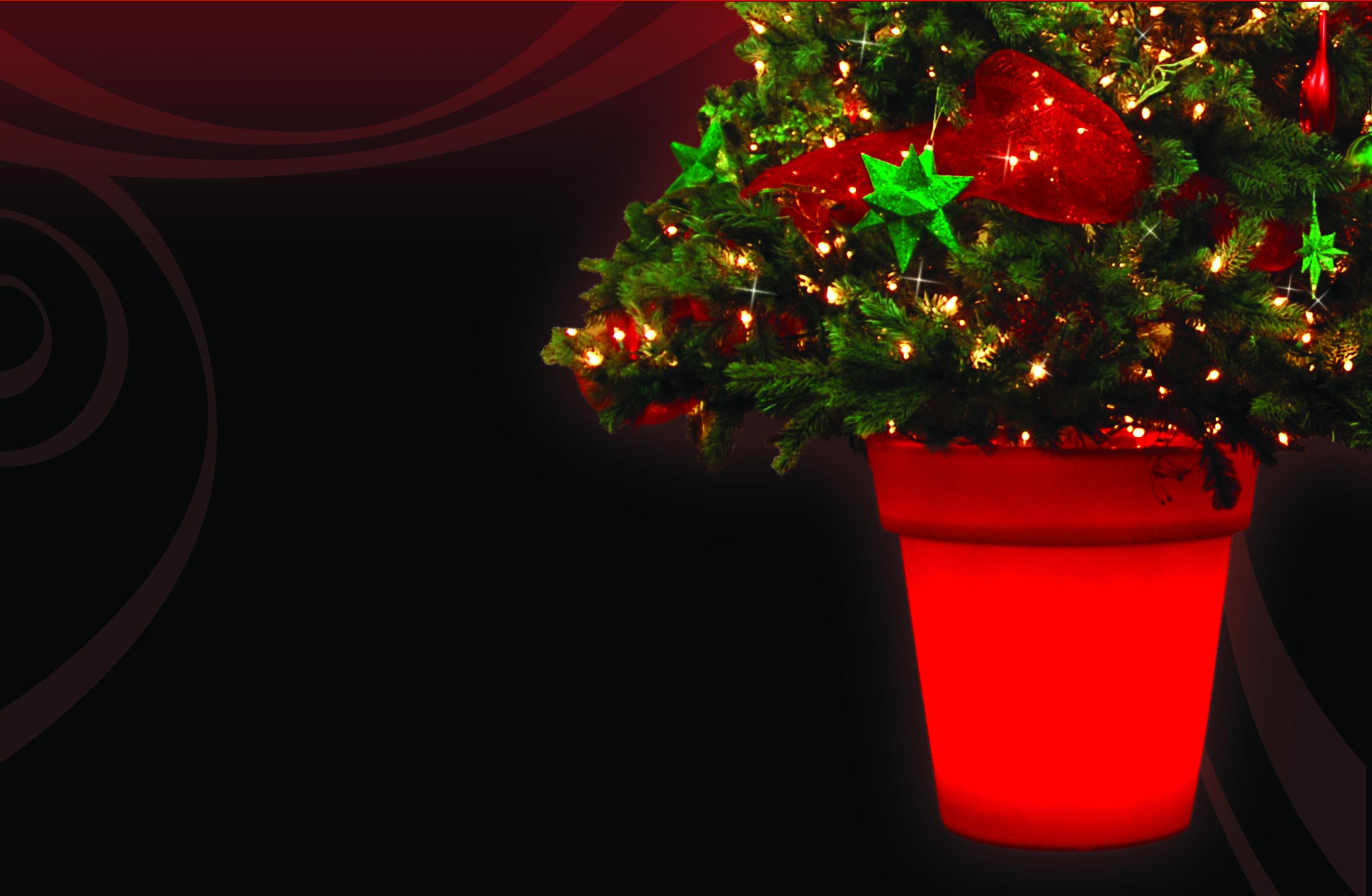 Stella pot lumineux pour arbre de no l avec systeme de for Laser lumineux pour noel