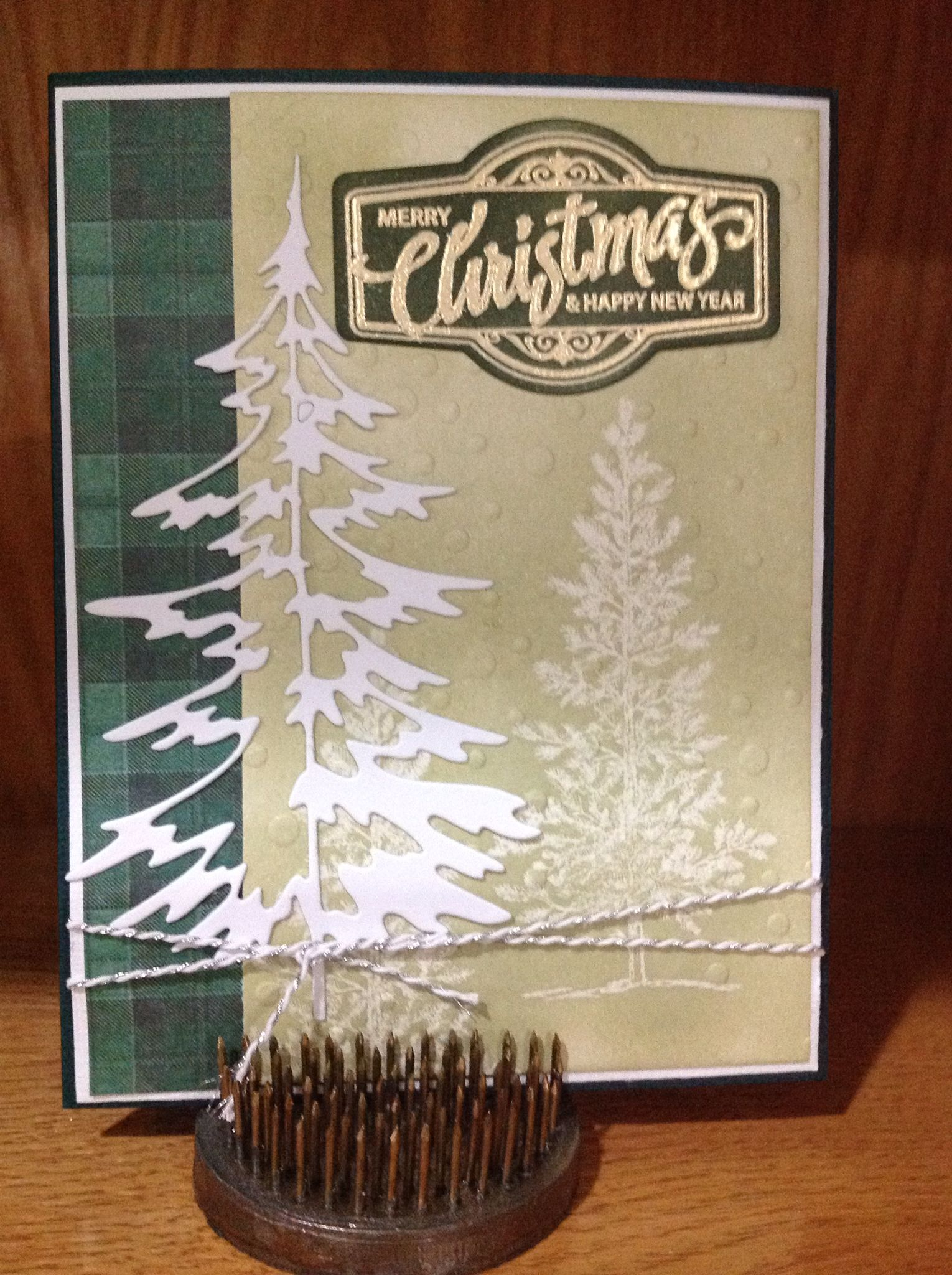 Tim Holtz die, S/U Lovely as a tree embossed and sponged w/Memento Pistachio then folder embossed, sentiment Spellbinders Just Right embossed gold, sponged w/Mem. Northern Pine
