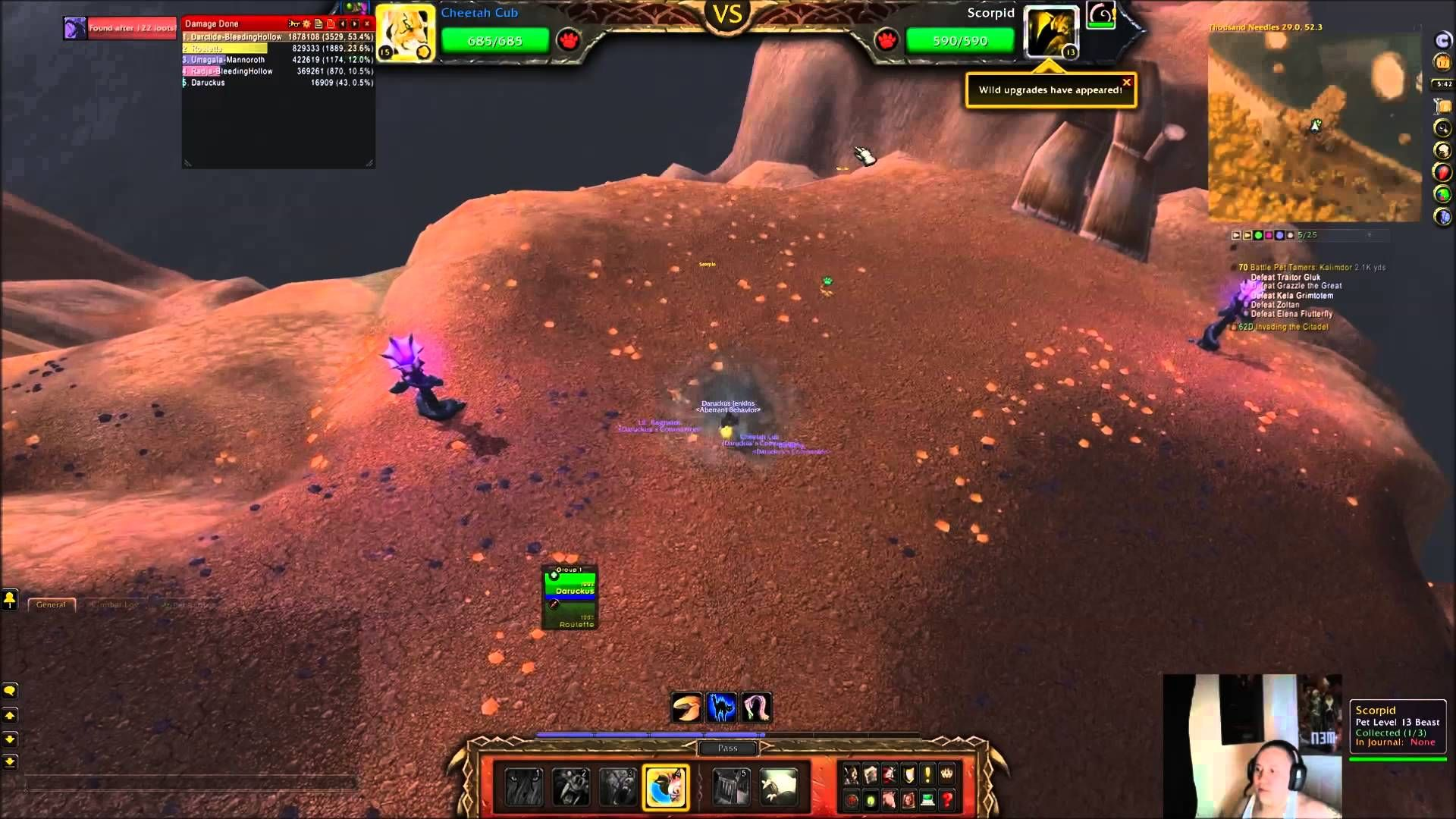 Cool Ehpik Battles Pets In Wow Warcraft Pets World Of Warcraft