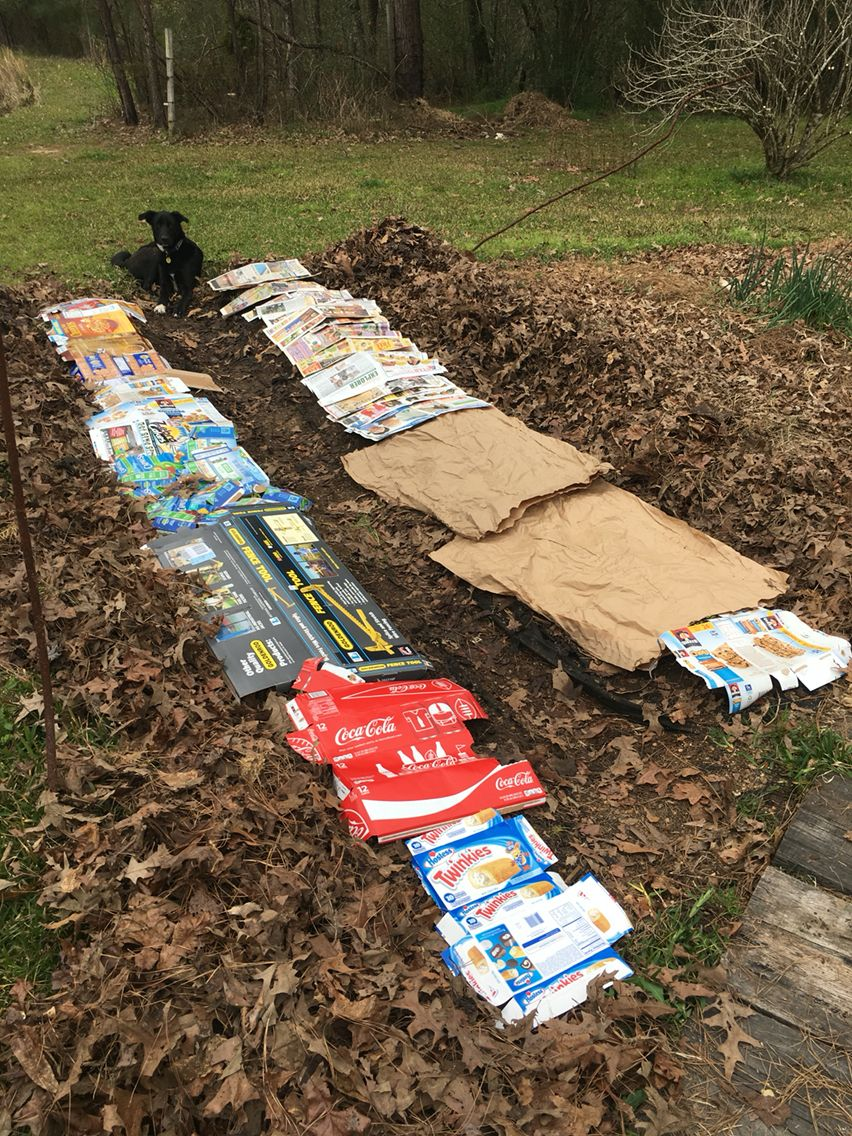 No till gardening and recycling. Use cardboard or newspaper to cover the soil, then cover that up with leaves. Best if done in winter.