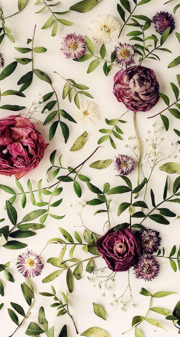 Phone Wallpaper Floral Wallpaper Iphone Floral Wallpaper Flower Wallpaper