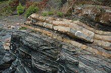Kalkstein på alunskifer