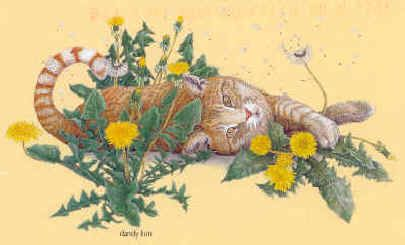 dandelion plant and cat