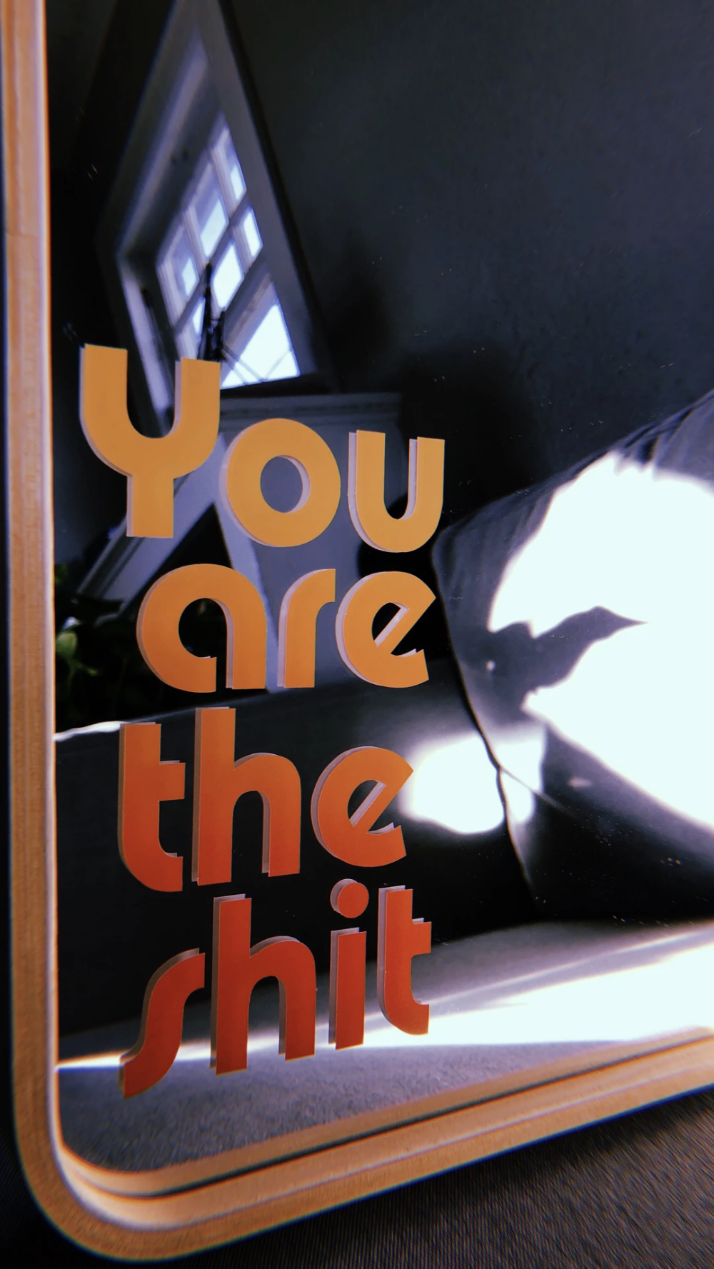 You Are The Shit Decal Sticker In 2020 Decals Stickers Decals