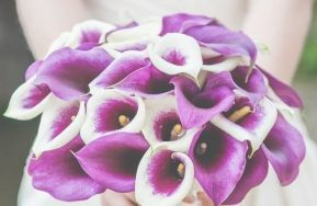 Wedding Bouquet Using White and Purple Calla Lillies by Serendipity