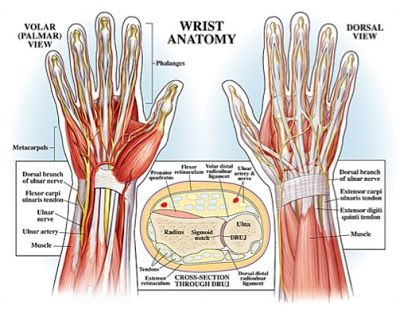 Prevent Yoga Injury: 3 Essential Tips for Protecting Your Wrists in ...