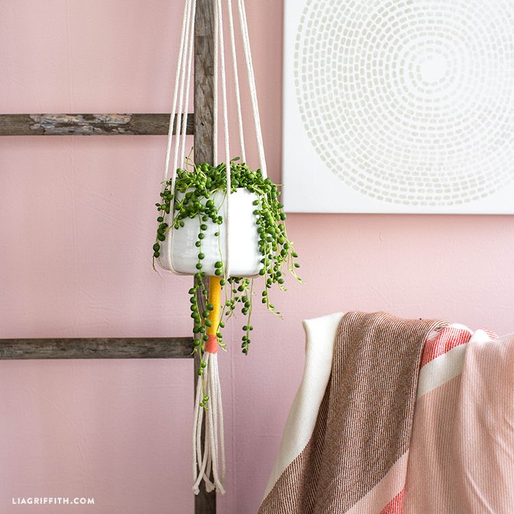 How To Make A Simple Rope Plant Hanger Diy Plant Hanger Macrame Plant Hanger Plant Hanger