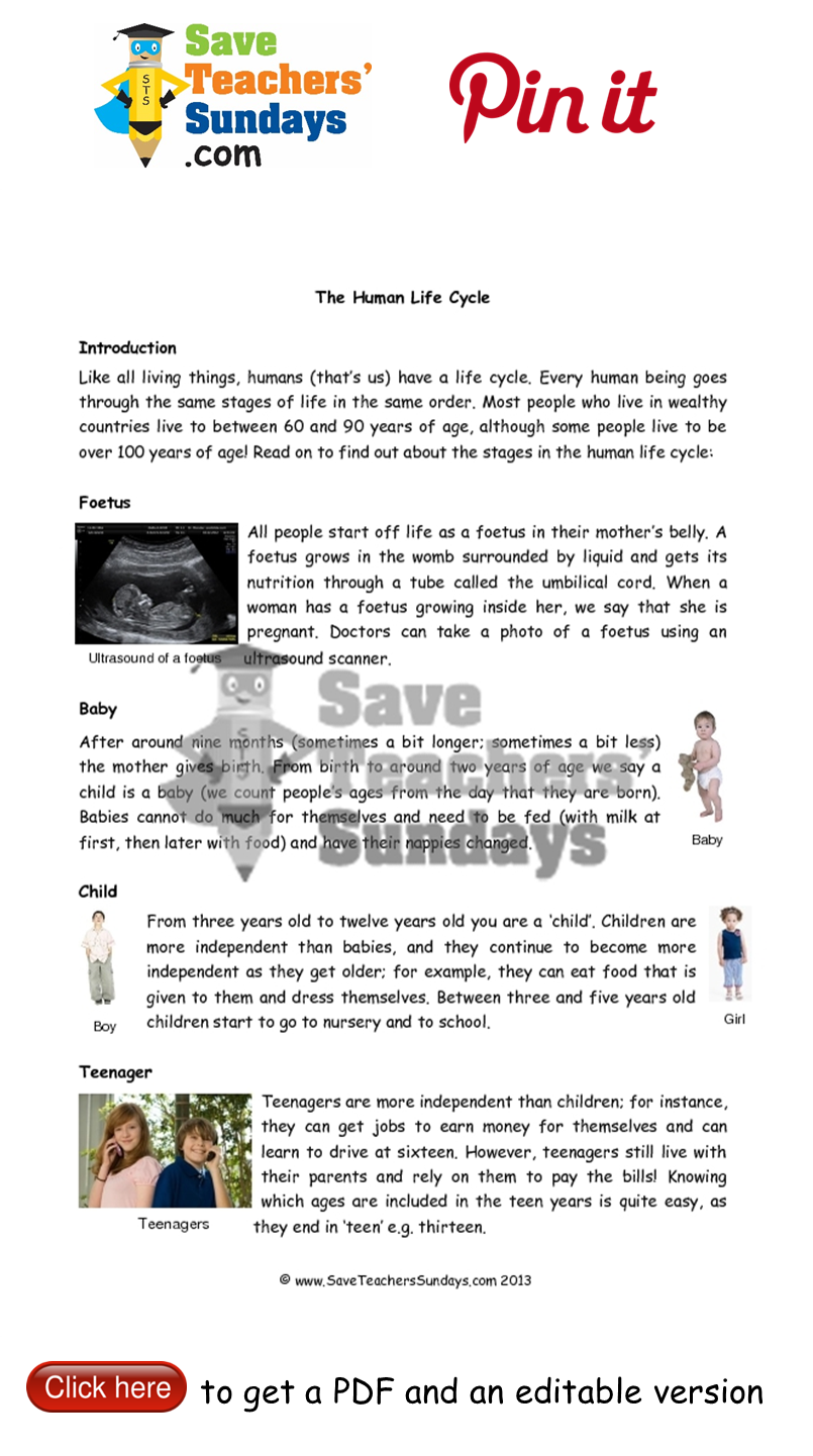 worksheet Human Life Cycle Worksheet For Kids pin by saveteacherssundays com primary teaching resources on year 2 lesson 6 human life cycle worksheets plans and other resources