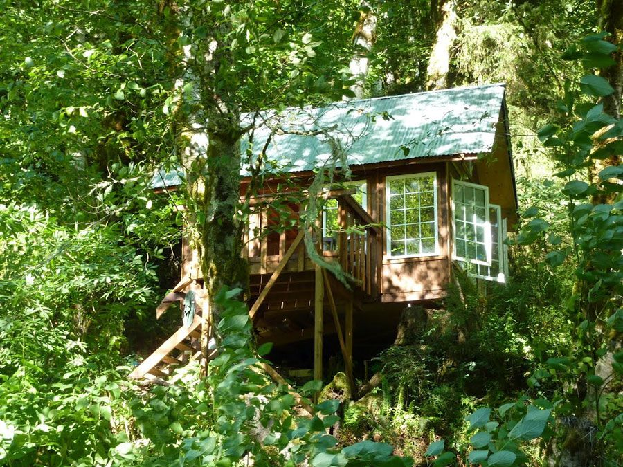 1-tiny-cabin-woods