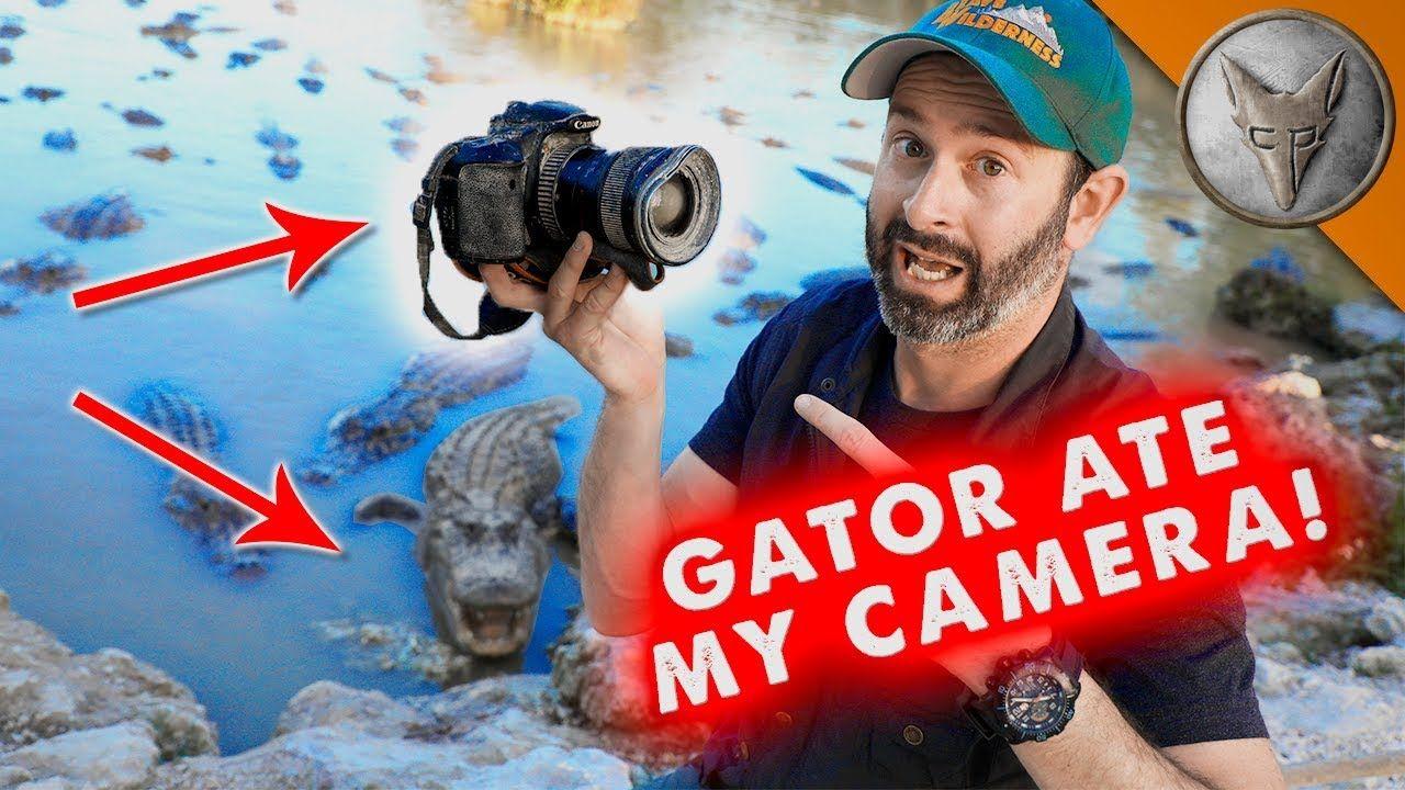 Gator ate my camera social media video camera gator