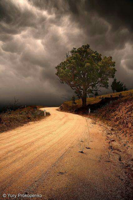 Country Road by yury..