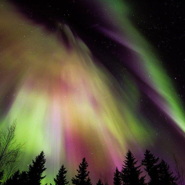 On instagram by oksanjuha  #astrophotography #metsuke (o)  http://ift.tt/1RRN1wI  Revontulia viime maaliskuussa. Tätä luvassa ensi yönäkin mikäli pilvet väistyvät... #northernlights #aurora #auroraborealis #revontulet #nightsky #nightphotography  #ig_astrophotography #universetoday #jklsirius