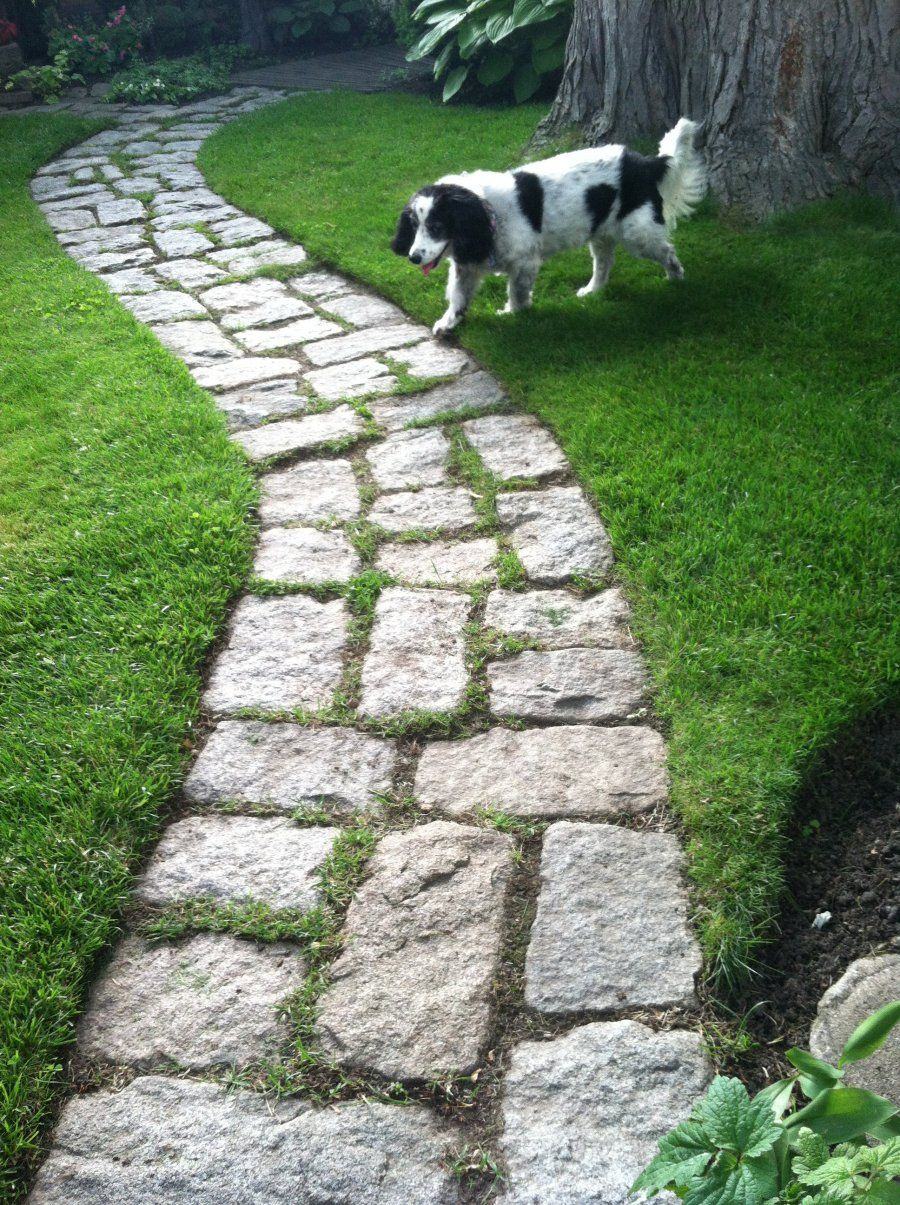 jumbo cobbles laid on their side for walkway garden paths