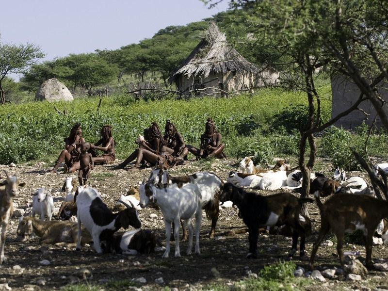 cultural visit : maasai village