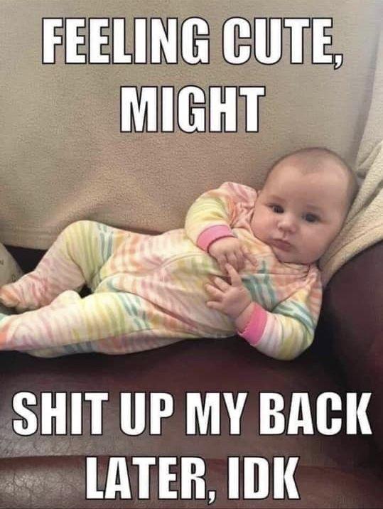 Bad Mom Meme: Pin By Michael F. Pichette On Humor