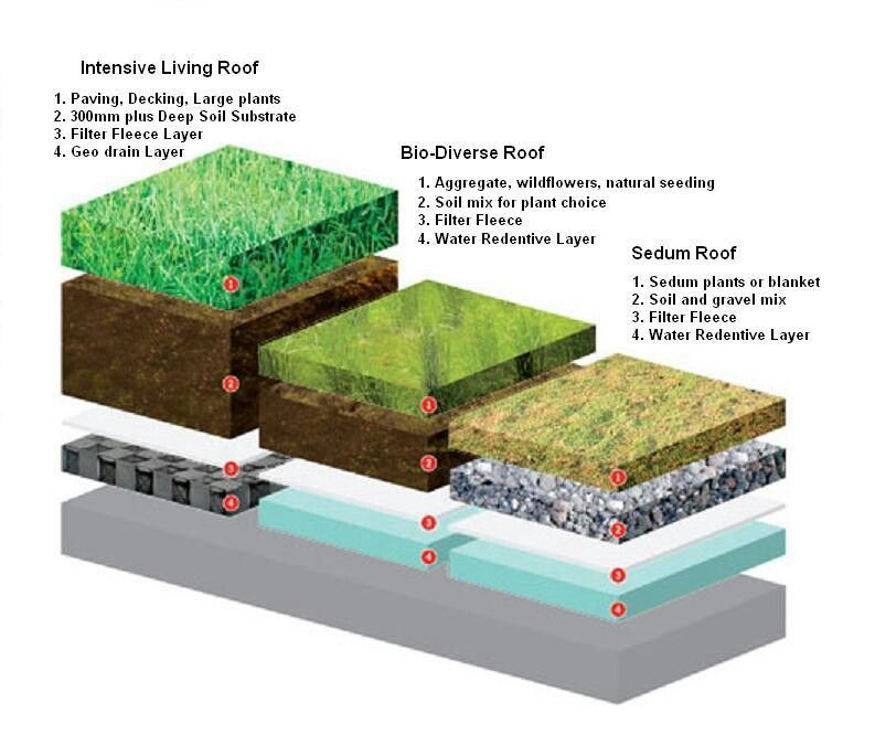 Pin On Green Roof