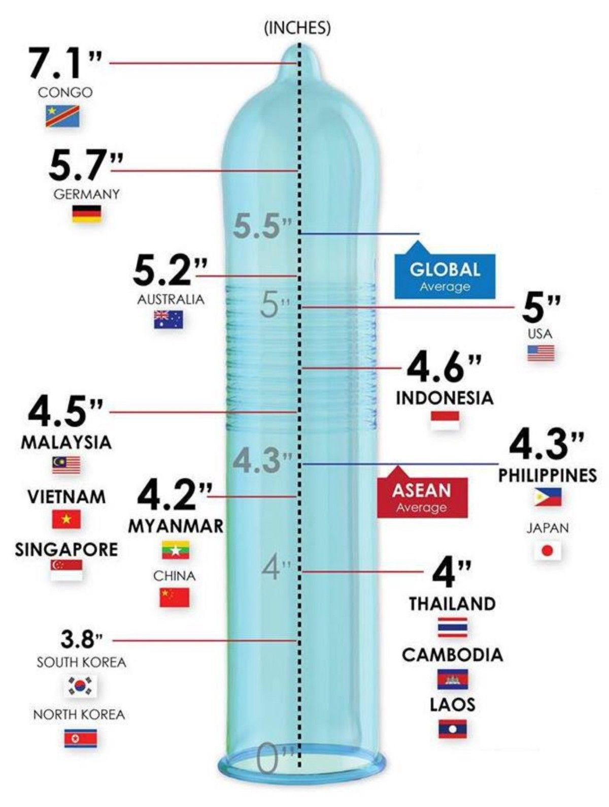 Average Size Of Penis By Country