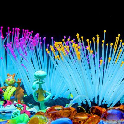 Colorful Luminous Starfish Conch Shells Set Aquarium Decoration #men - halloween fish tank decorations