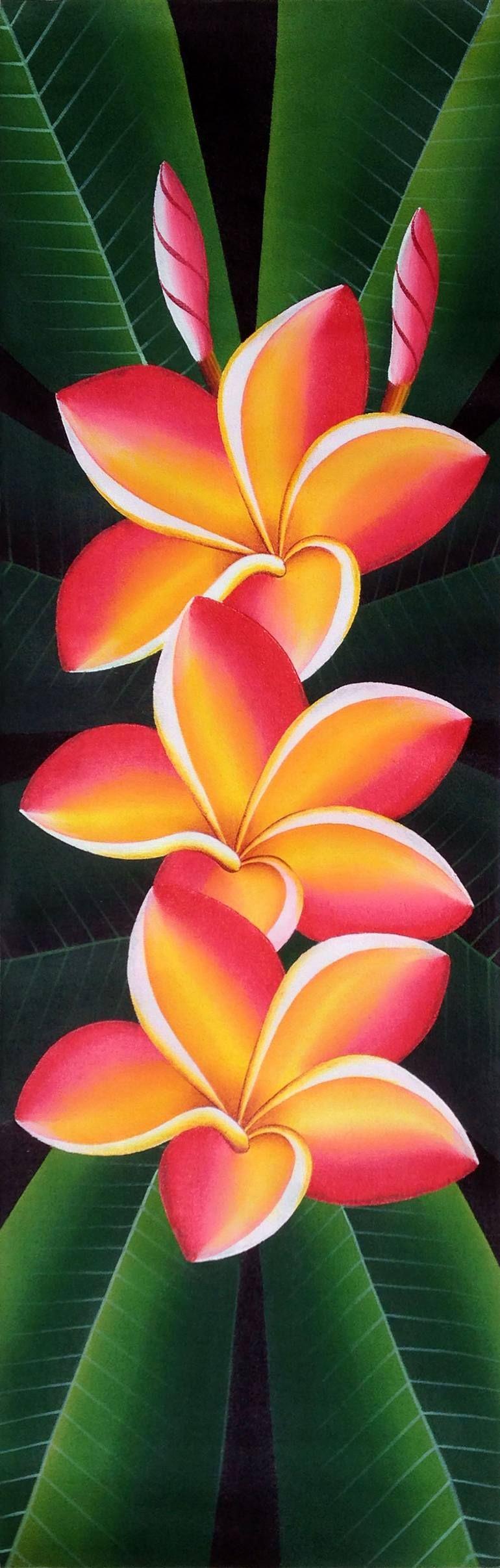 Buy frangipani a acrylic on canvas by natalia davis from