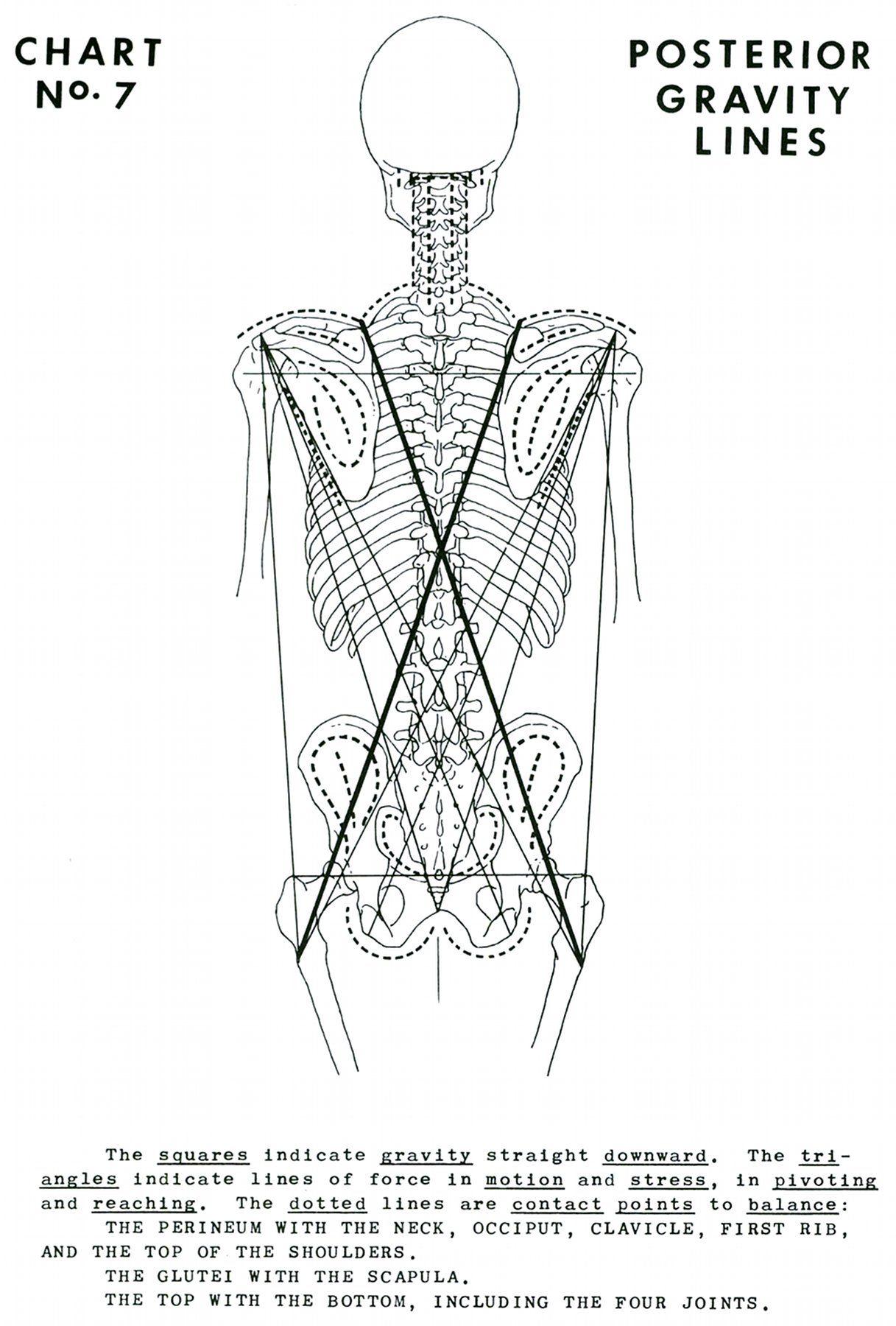 http://www.digitaldrstone.org/img/v1b1c07lg.jpg | Polarity Therapy ...