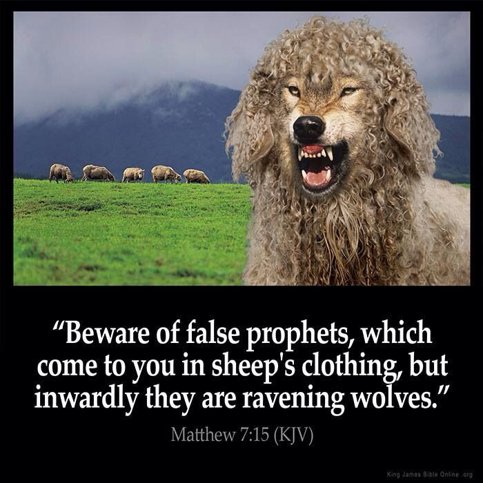 false prophets --- they're everywher | Uplifting scripture, Kjv, Bible verse pictures