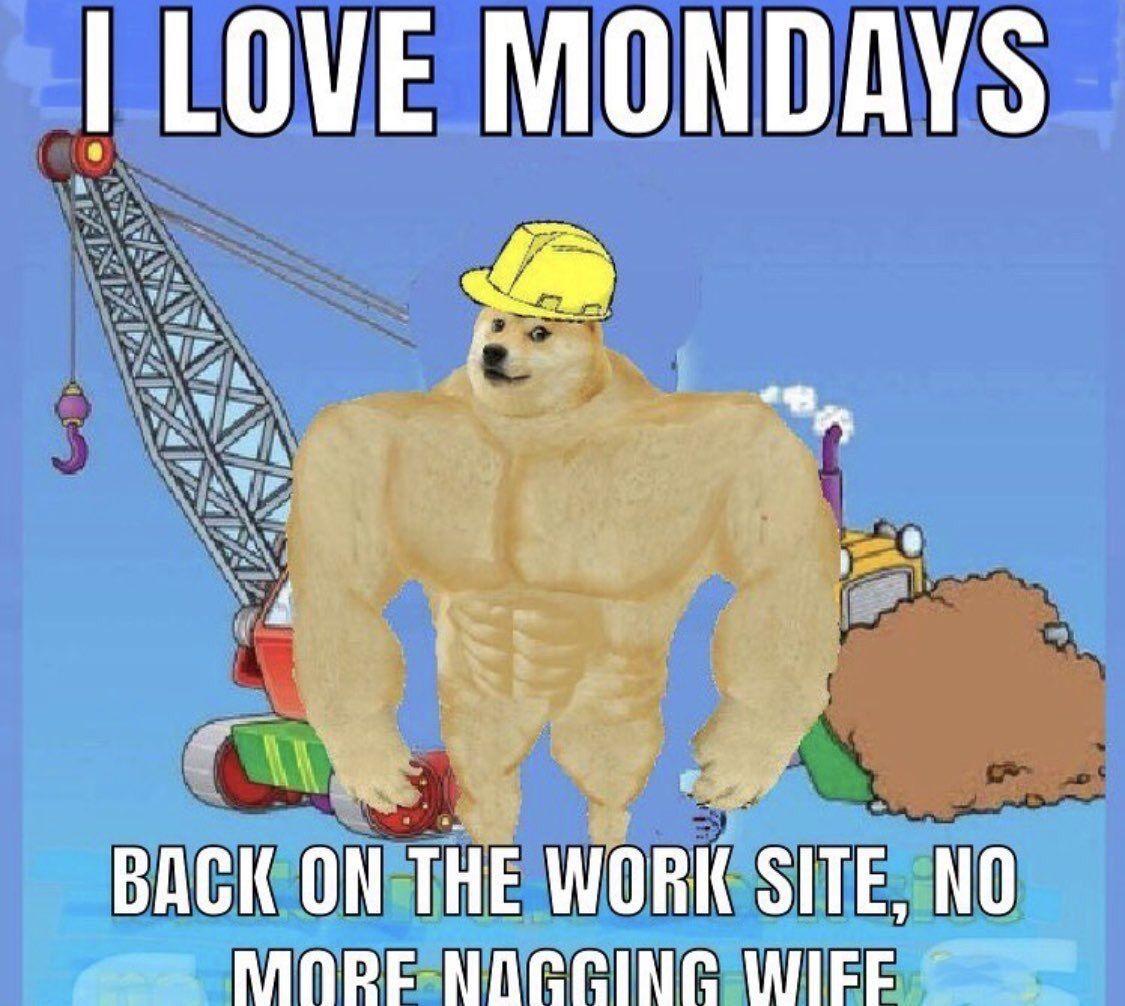 Pin By Panickypilot On Meme Gold Mine I Love Mondays Memes Jokes