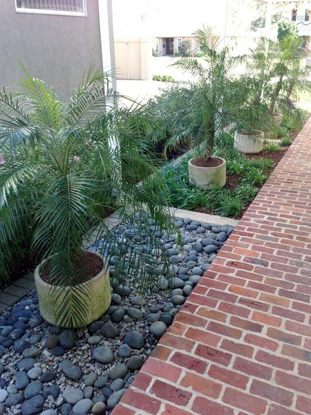 20 Uptown New Orleans Landscaping Ideas New Orleans Landscape Design Uptown