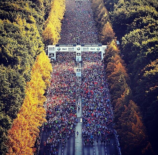 Berlin Marathon one of Abbotts World Majors is to be held on Sunday 25th of September. 3 days to go Anyone here taking part?