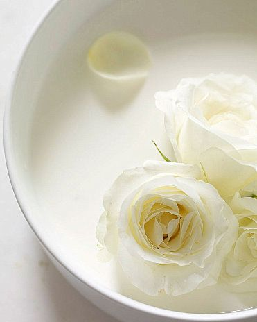 Pin By Tutyyratle On Aesthetic Pastels Colour Texture White And Pink Roses Shades Of White Floating Flowers