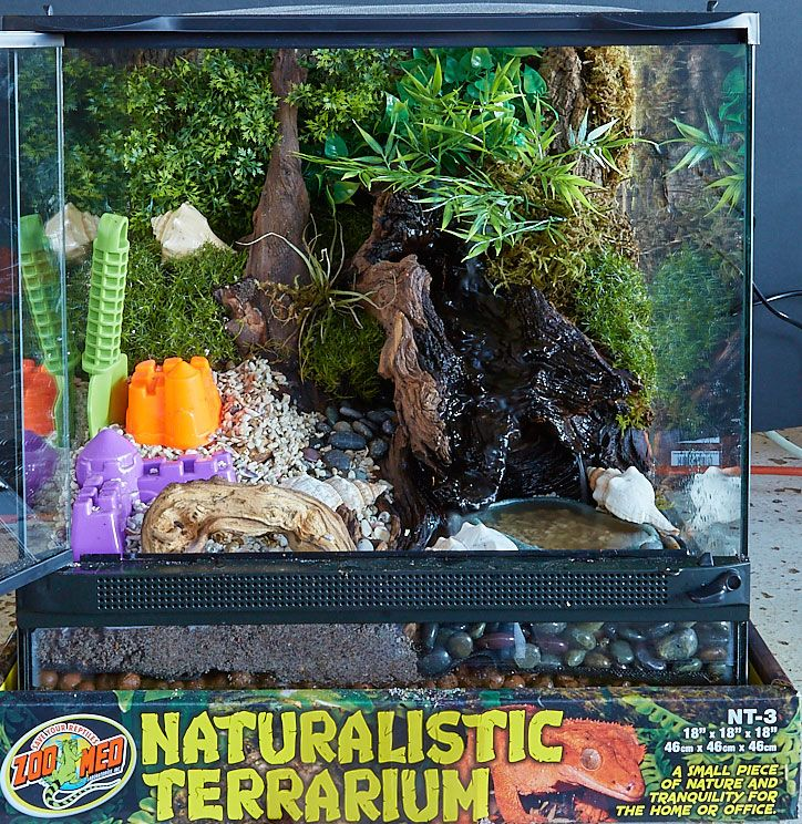 Hermit Crab Setup With Waterfall And Planted Hiding Spots Zoo Med Pet Care Hiding Spots