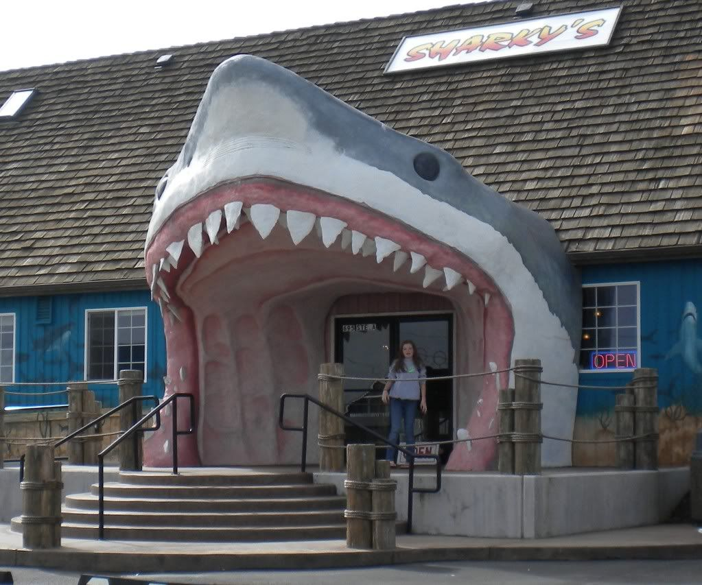 Ocean Shores, WA Sharkey's