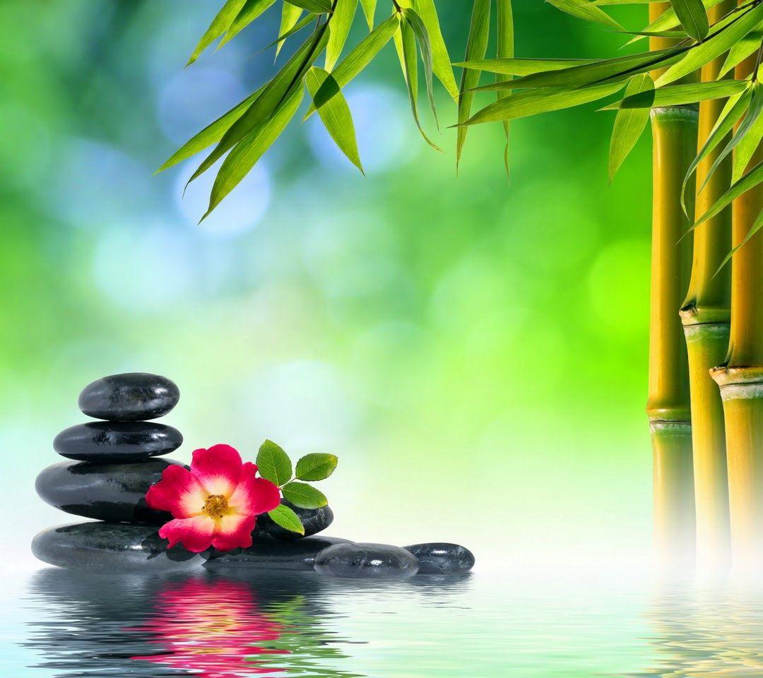 Idea by Dixie Lacy on Spa backgrounds Zen pictures, Zen