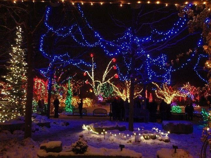 Christmas Lights Boise.Pin By Sarah Lee On Everything Christmas Christmas Scenery