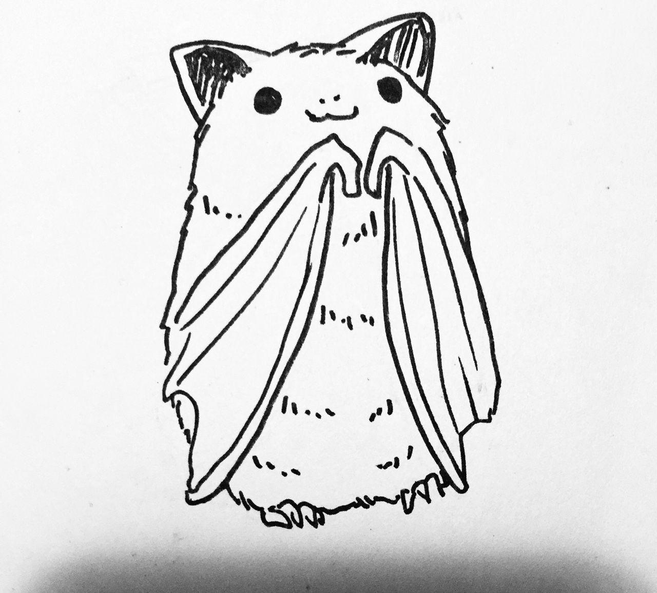 Cute halloween bat drawings
