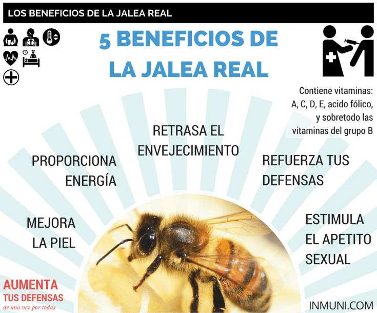 Para que sirve la jalea real de abeja reina