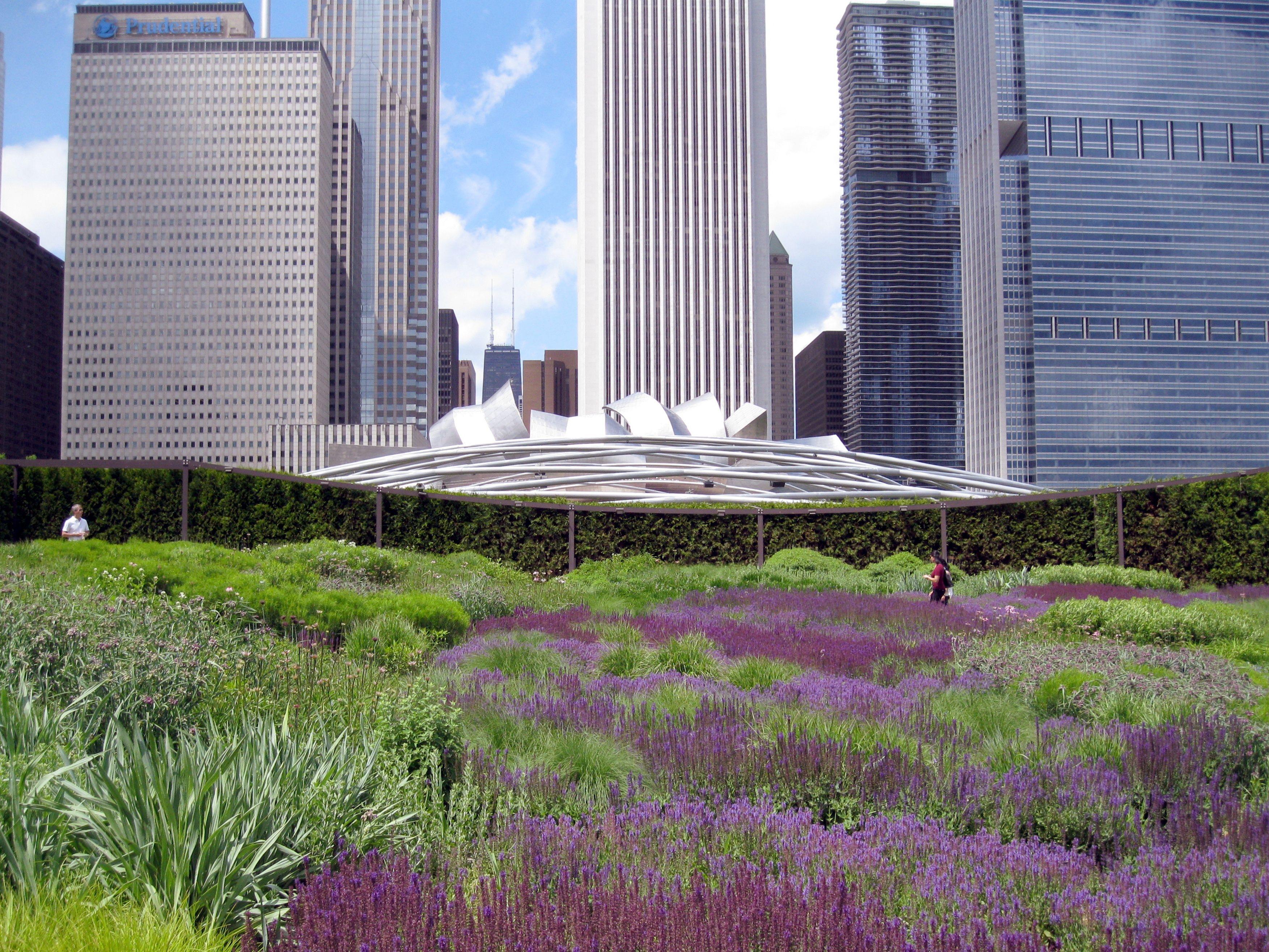 539 best landscape design images on pinterest landscaping