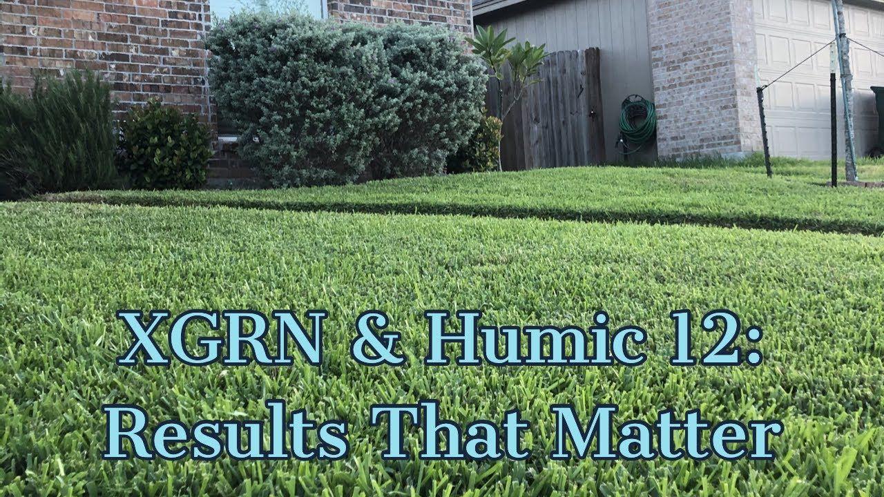 Xgrn Humic 12 Youtube In 2020 Diy Lawn Lawn Work Lawn Care