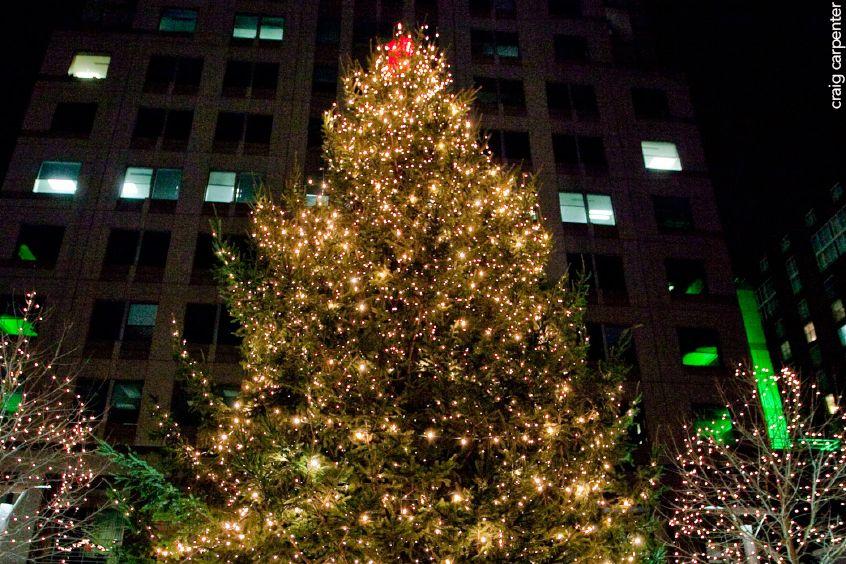 downtown raleigh christmas tree photo credit craig carpenter
