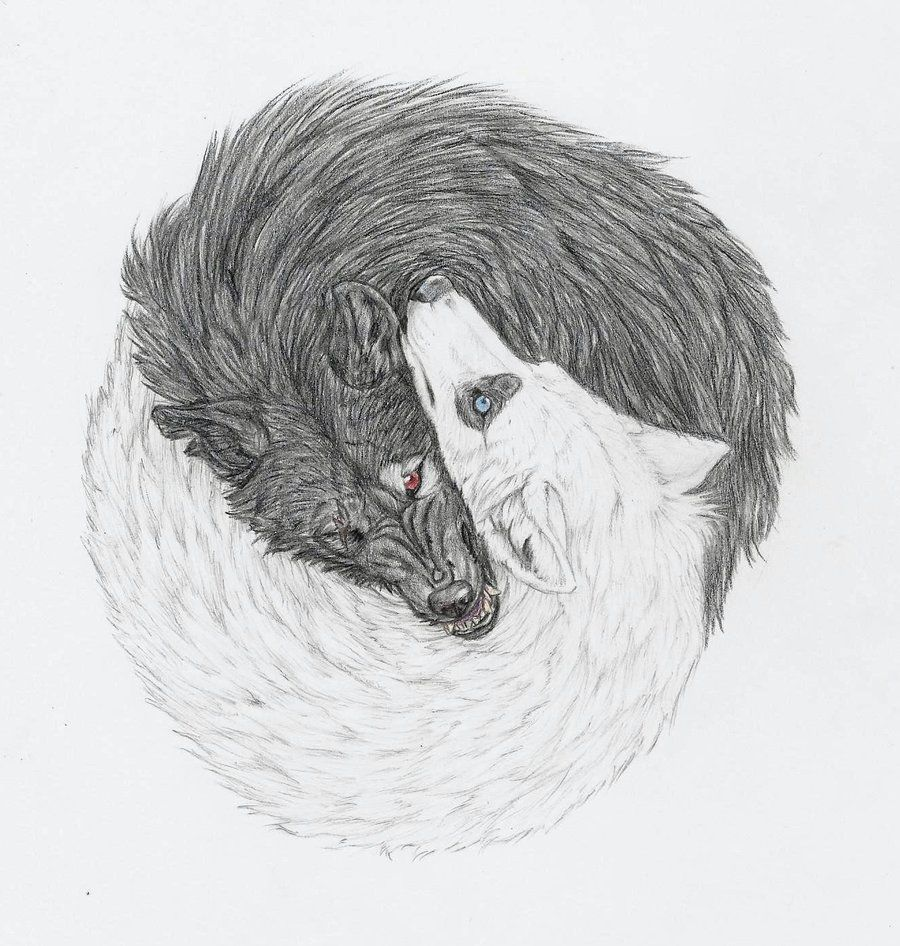 Drawings Of Wolves: Yin And Yang Wolves By Mysteriouswhitewolf