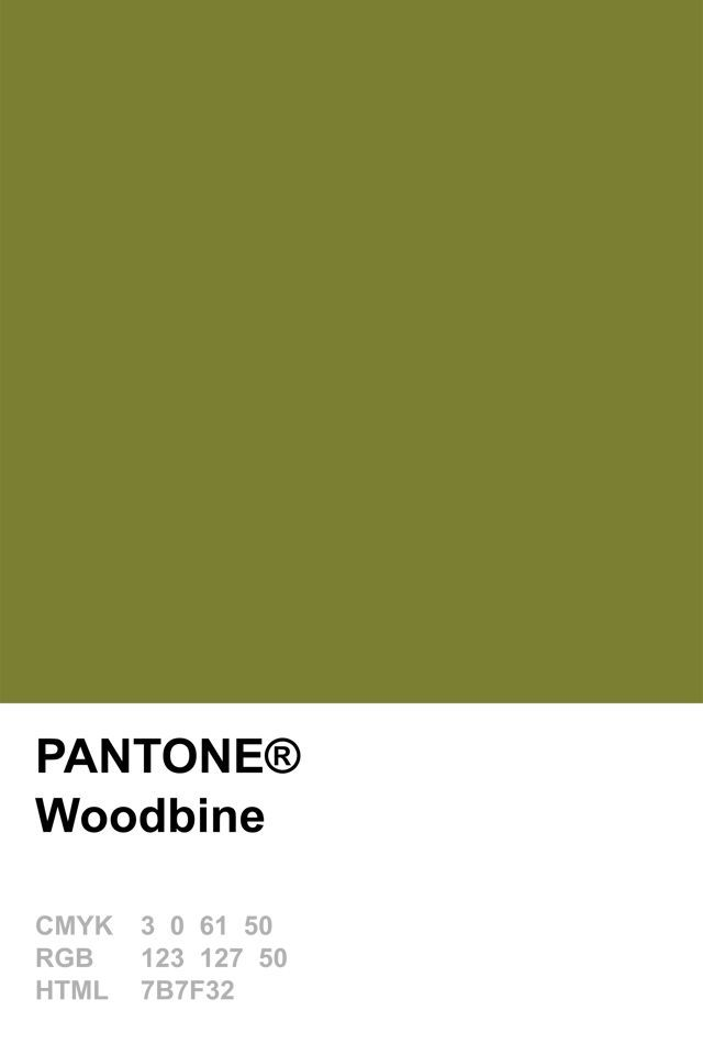 Woodbine Pantone 2010 Pantone Swatches Olive Green