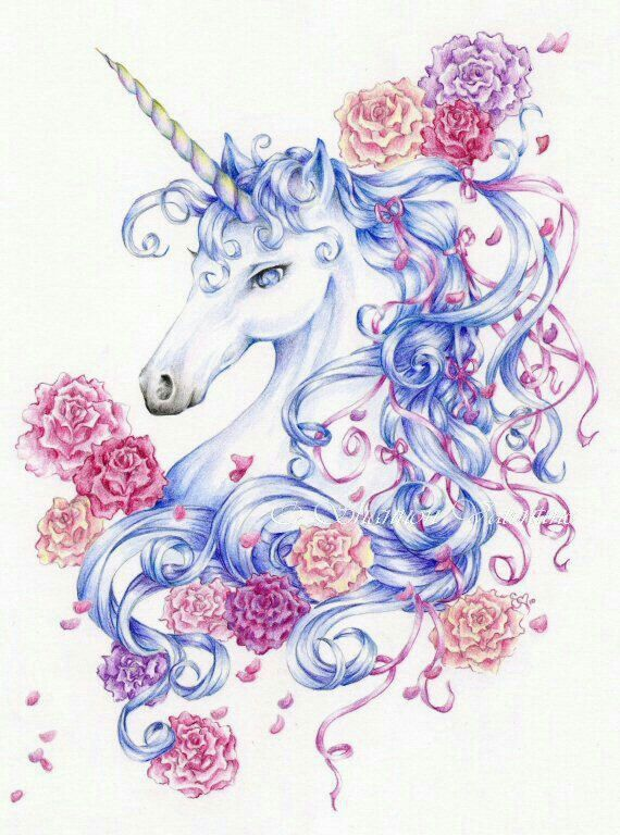 Pin de Tammy Underwood en Animals | Pinterest | Unicornios ...