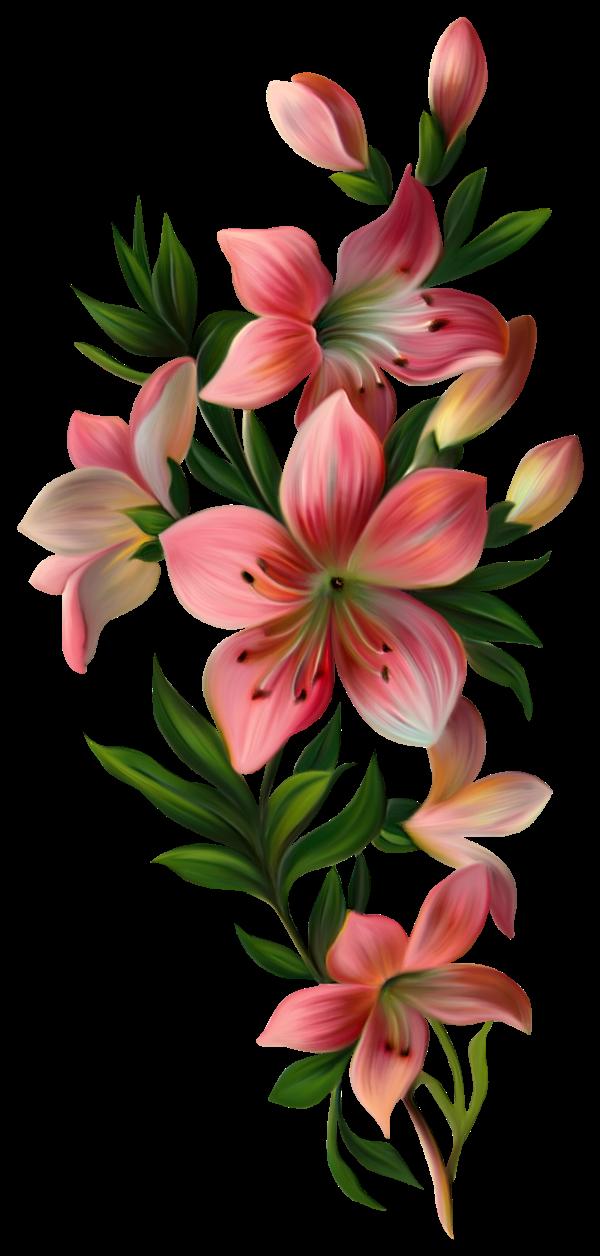 механизм позволяет цветы по вертикали картинка без косметики