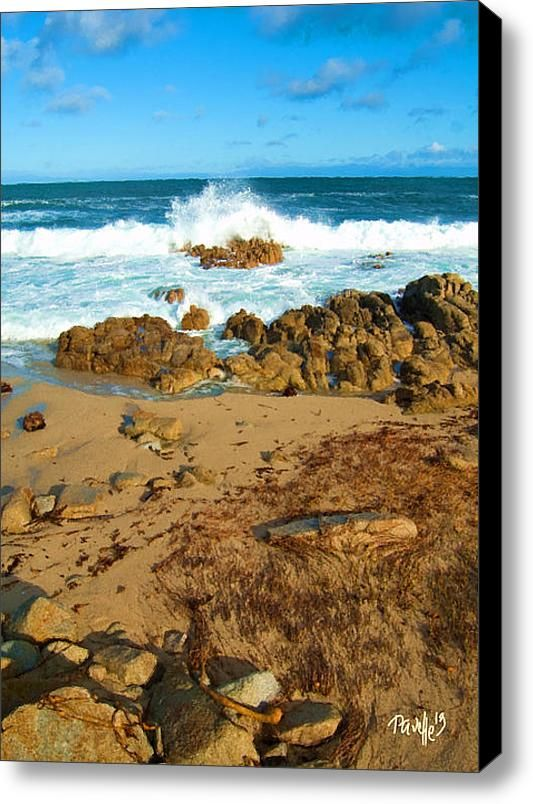 Ebb Tide - Pacific Grove Ca Stretched Canvas Print / Canvas Art By Jim Pavelle